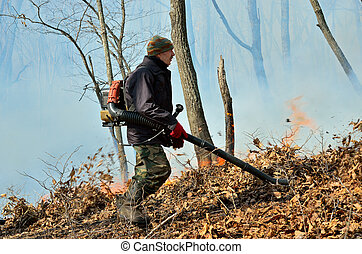 Suppression of forest fire - A suppression of forest fire....