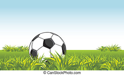 Soccer ball in the grass Vector illustration