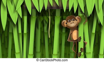monkey - video, a brown monkey in the jungle