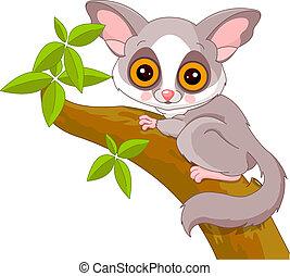 Fun zoo. Galago - Fun zoo. Illustration of cute Galago