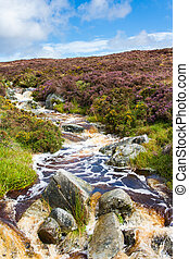 River in Wicklow Mountains