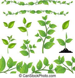Set Leaves