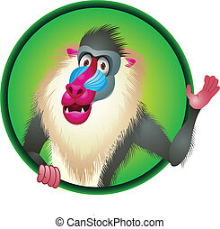 Baboon cartoon  - Vector Illustration Of Baboon cartoon