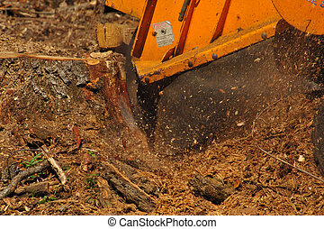 Stump Grinder Close-up - Stump Grinder Hard at Work on Large...