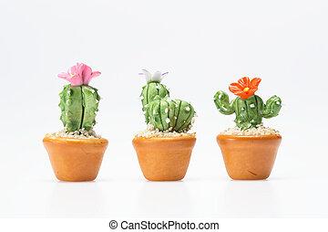 cactus toy