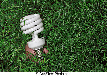 Energy saving light bulb in hand on a green grass background