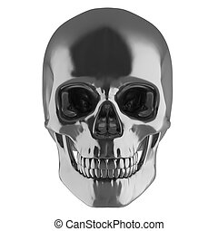 silver skull  3d illustration