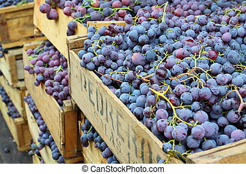 Red grapes at the local market in Valparaiso, Chile.