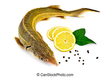 Fish starlet with lemon and pepper - Sturgeon fish with...