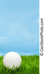 Golf Ball in Grass and Blue Sky