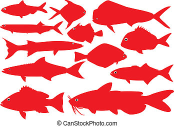 Fishes. - Outline of salt water fishes in red silhouettes.