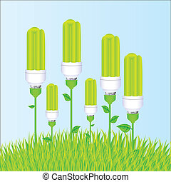 planting of ecological bulb