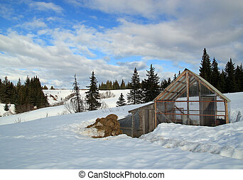 Rural Alaskan greenhouse and chicken coop in the snow -...