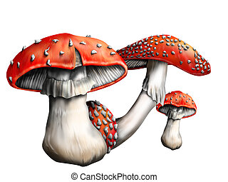 Magic mushroom - Isolated illustration of a small group of...