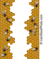 Bees working frame - Working bees over a honeycomb frame,...