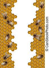 pszczoły, pracujący, ułożyć