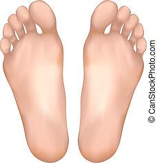 sain, pieds