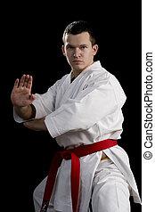 contraste, karate, joven, luchador, negro