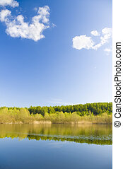 lake shore - Trees on the lake shore, reflections in the...