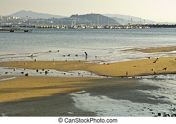 Vigo Ria - Over the sea, some bateas (raft culture of...