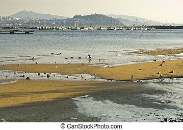 Vigo Ria - Over the sea, some bateas (raft culture of...