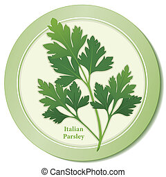 Italian Parsley Herb Icon