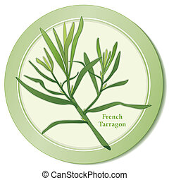 French Tarragon Herb Icon - French Tarragon herb icon, anise...