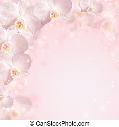 Wedding background with orchid
