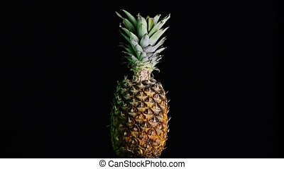 Big pineapple turning on itself on a black background