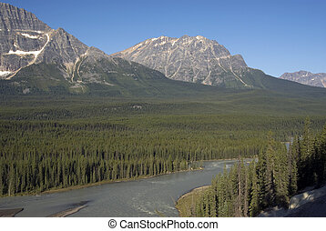 Rocky Mountains and Athabasca River
