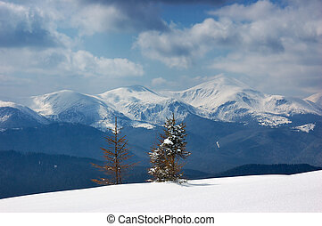 Mountain Landscape - Winter landscape in the mountains...