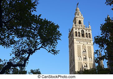 Giralda - the tower of the cathedral known as the Giralda,...