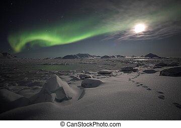 norteño, luces, -, Spitsbergen