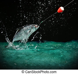 Catching a big fish at night - Catching a big fish with a...