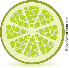 dots lime - slice of dots lime, white background