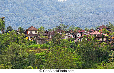 small village in mountains in the jungle of Indonesia