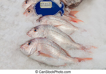 New Zealand red snapper fish on ice in the market
