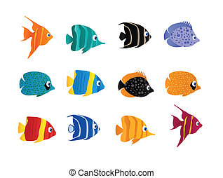 Cartoon fish on the white background