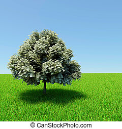 Money tree growing in the middle of green meadow.
