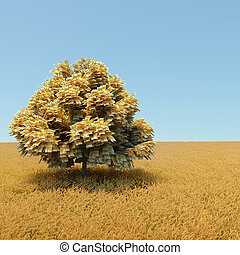 Money tree - Automne money tree in the middle of wheat field