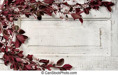 Choke cherry branches on vintage door - Choke cherry...