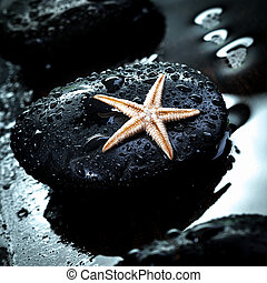 Massage stone and starfish - Black therapeutic spa massage...
