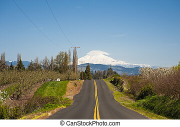 Rural road, Mt Adams - Rural road through Hood River Valley,...