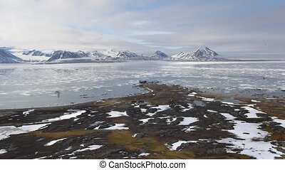 Arctic environment - tundra, ford and mountains
