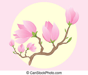 magnolia - an illustration of a branch of beautiful pink...