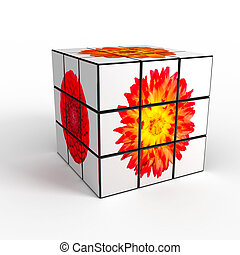 3d cube with photo over white background computer generated...