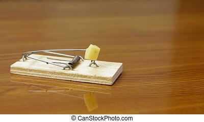Hand In A Mousetrap - The human hand reaching for the cheese...