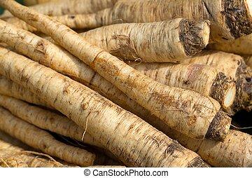 turnip on market