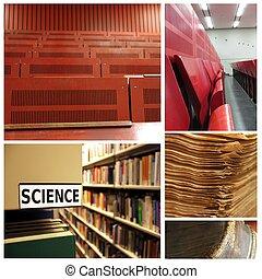 collage, vetenskap, universitet