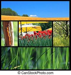 summer collage 2